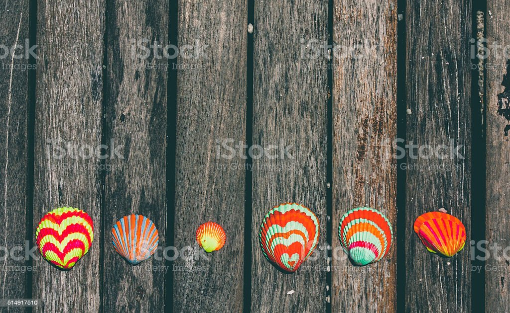 Colorful seashells on rustic wooden planks stock photo