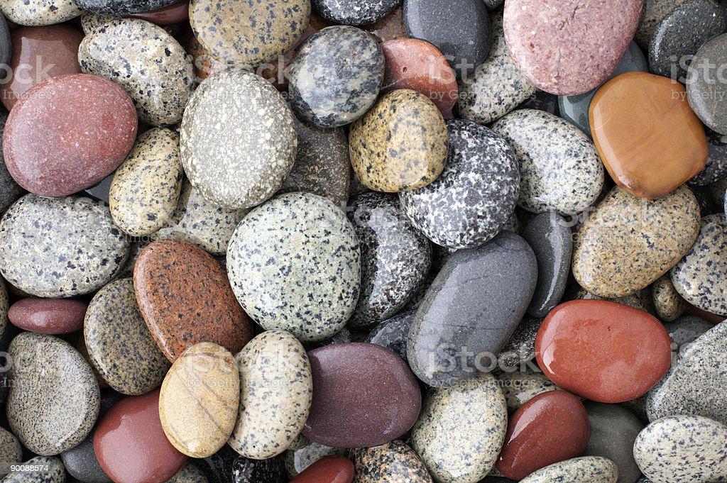 colorful shiny wet multicolored pebbles on seashore stock photo