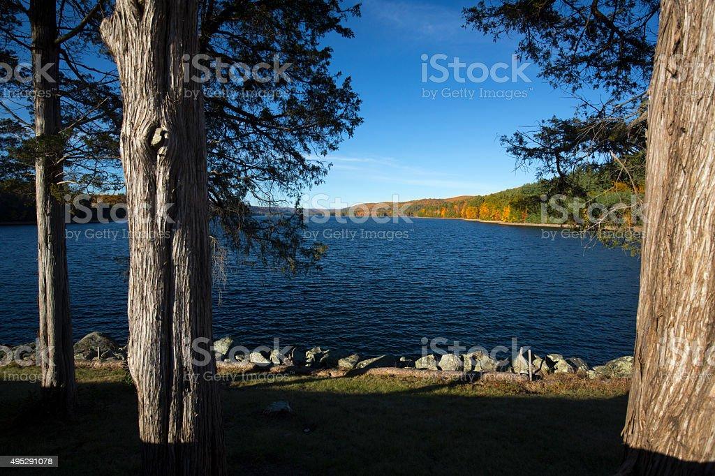 Colorful shoreline of Barkhamsted Reservoir, framed by cedar tre stock photo