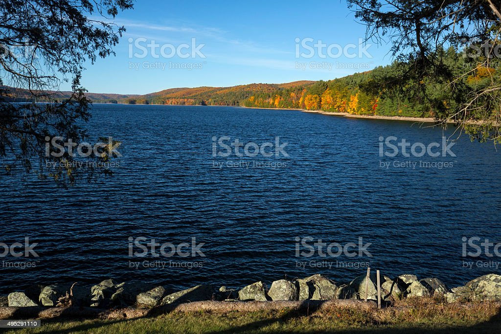 Colorful shoreline of Barkhamsted Reservoir, framed by cedar tre stock photo