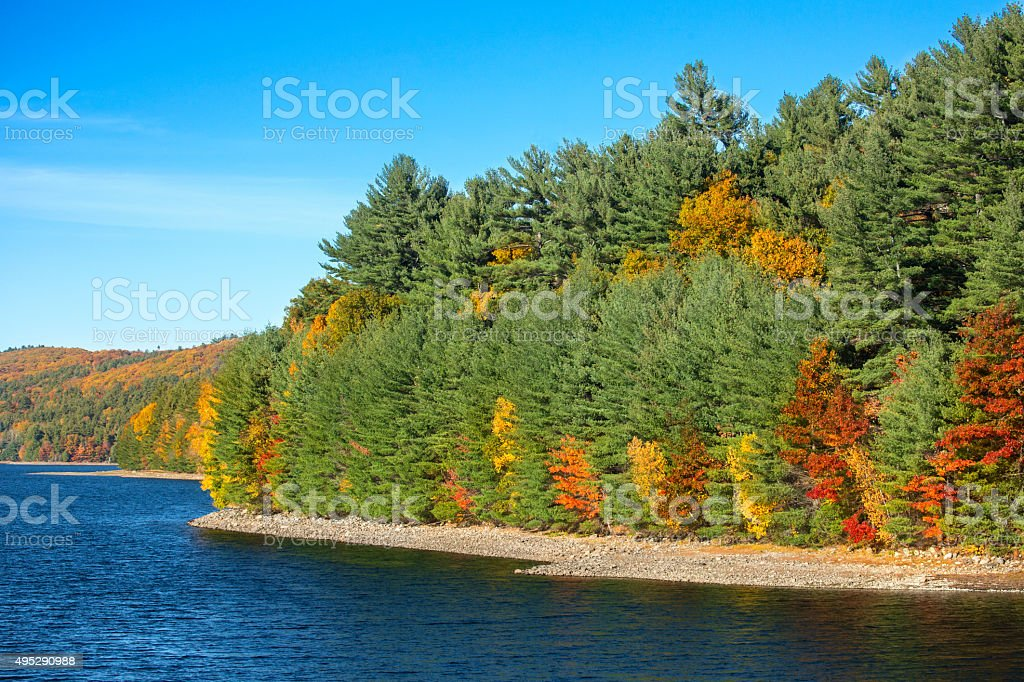 Colorful shoreline of Barkhamsted Reservoir in October. stock photo
