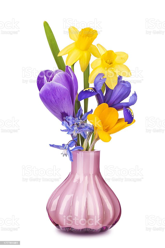 Colorful spring flowers in a vase royalty-free stock photo