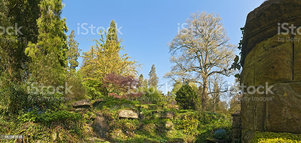 Colorful spring foliage lush new growth idyllic country garden panorama royalty-free stock photo