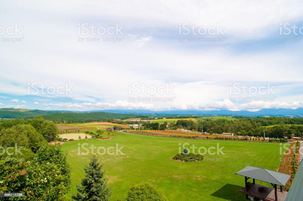 Colorful summer Hokkaido, Hill of Biei stock photo