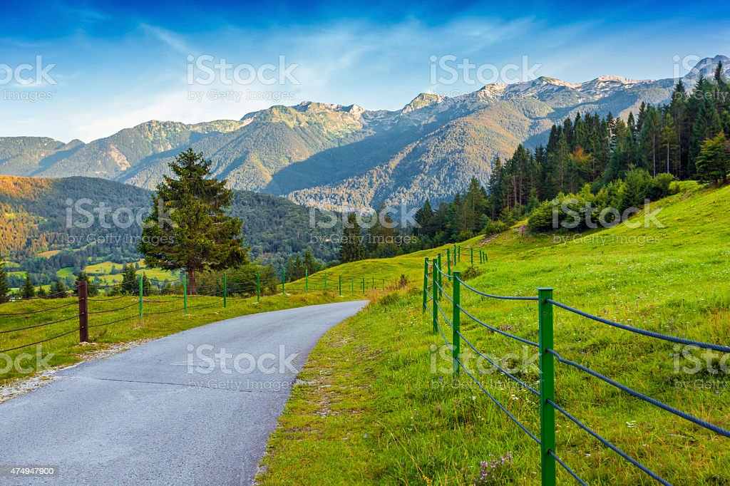 Colorful summer morning in the Triglav national park stock photo