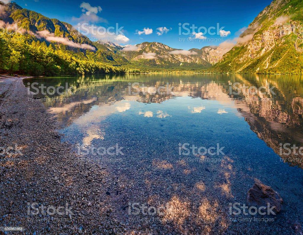 Colorful summer morning on the Bohinj lake stock photo