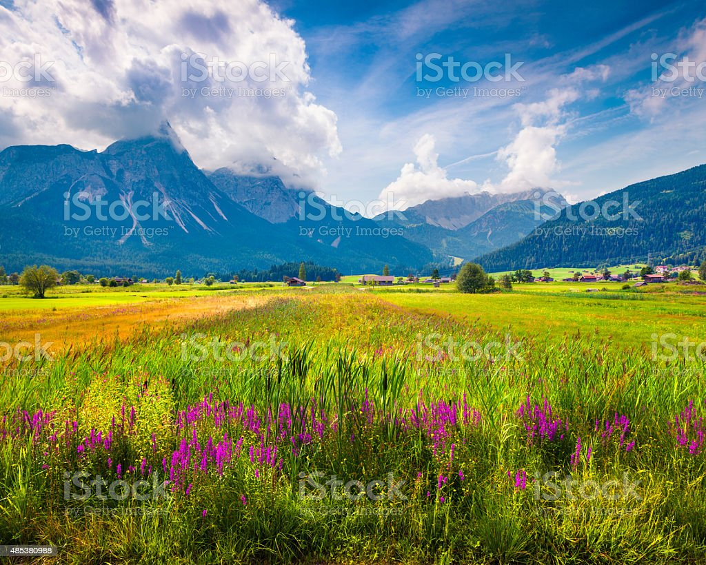 Colorful summer morning on the Golfclub Zugspitze stock photo