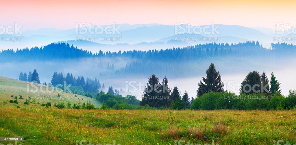 Colorful summer panorama of the foggy Carpathian mountains stock photo
