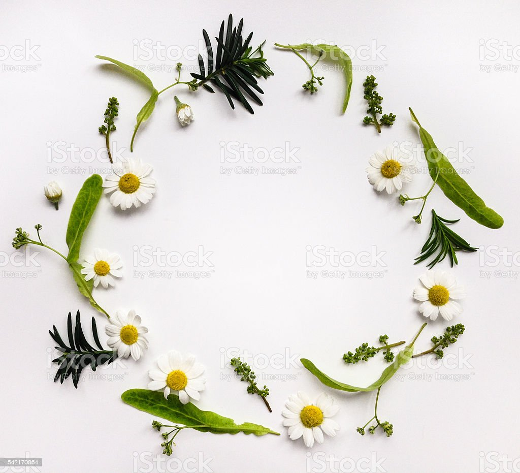 Colorful summer round frame with herbs and flowers stock photo