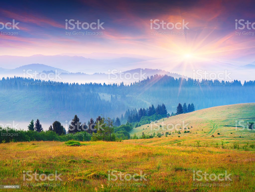 Colorful summer sunrise in the foggy Carpathian mountains. stock photo