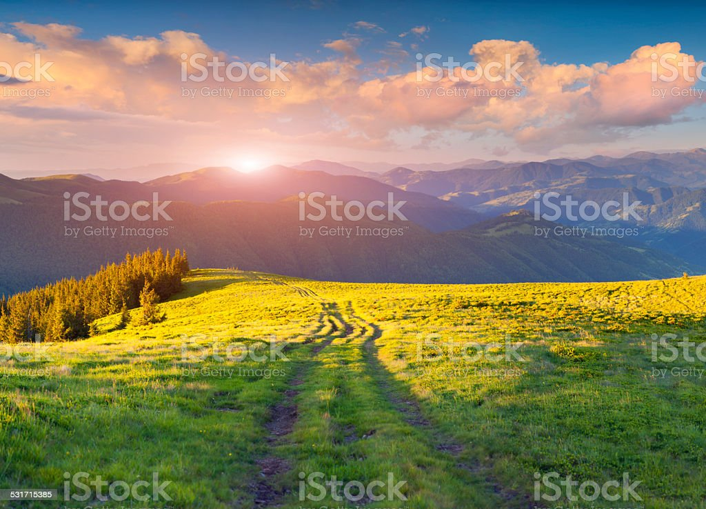 Colorful summer sunset in the Carpathian mountains. stock photo