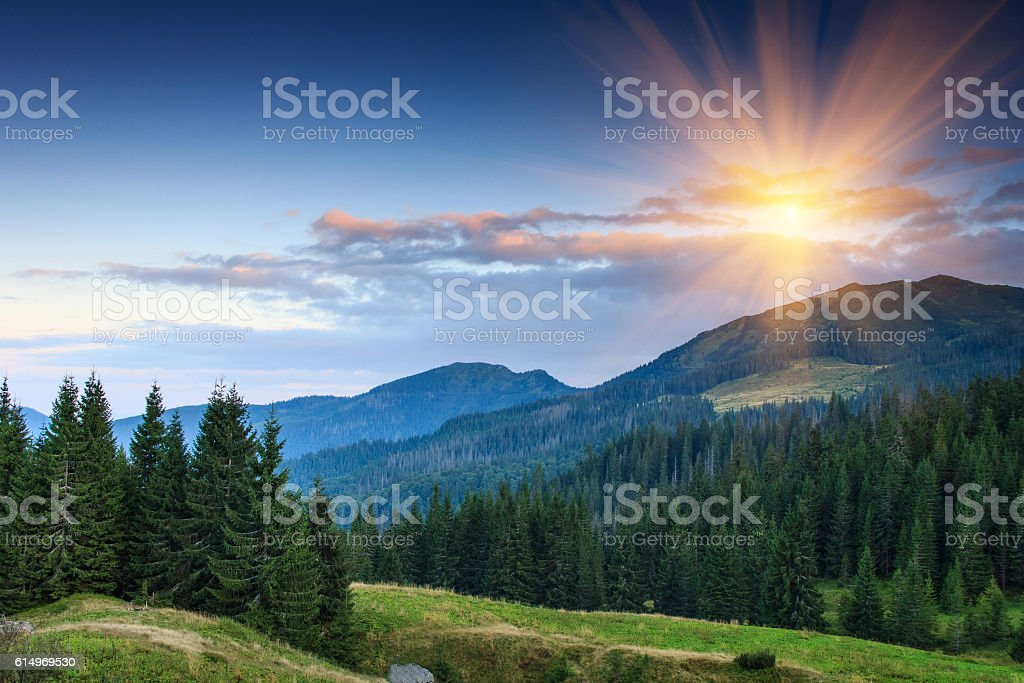 Colorful summer sunset in the mountains. stock photo