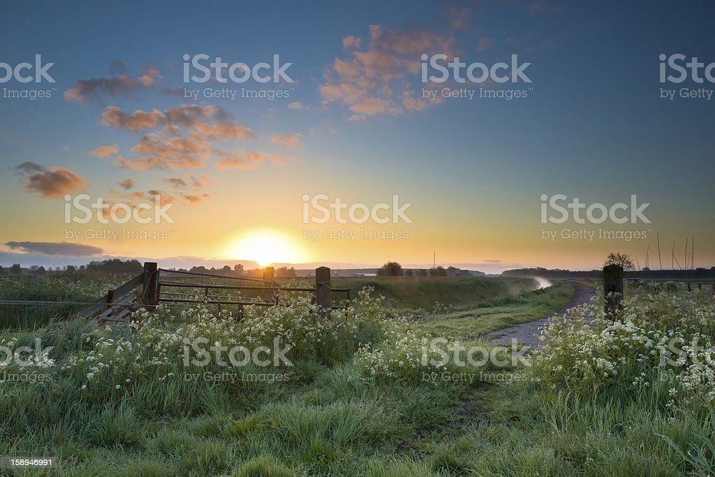 Colorful sunrise in may stock photo