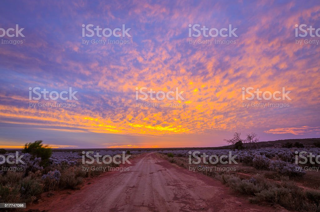 Colorful sunset in Australian remote plain rural land dirt road stock photo