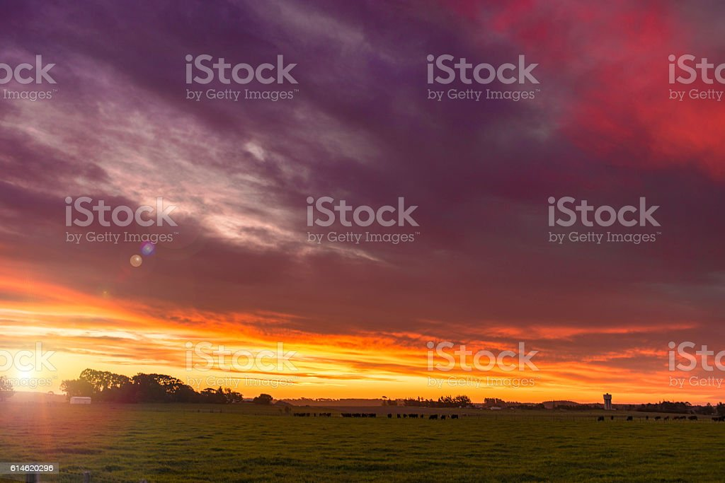 Colorful sunset with flare stock photo