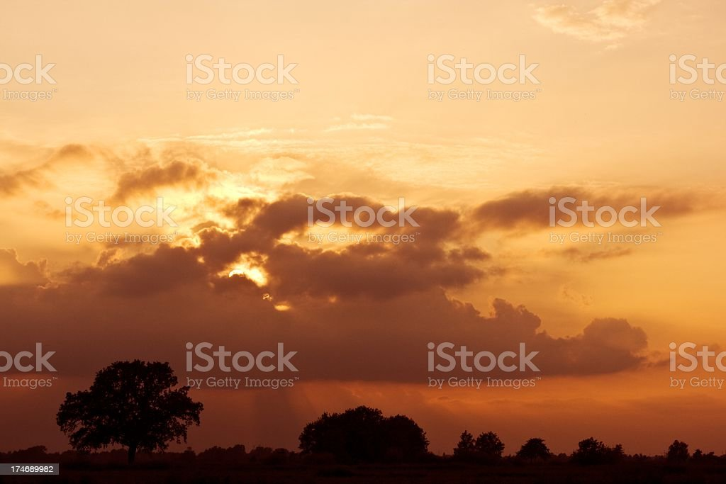 colorful sunset with trees in the background stock photo