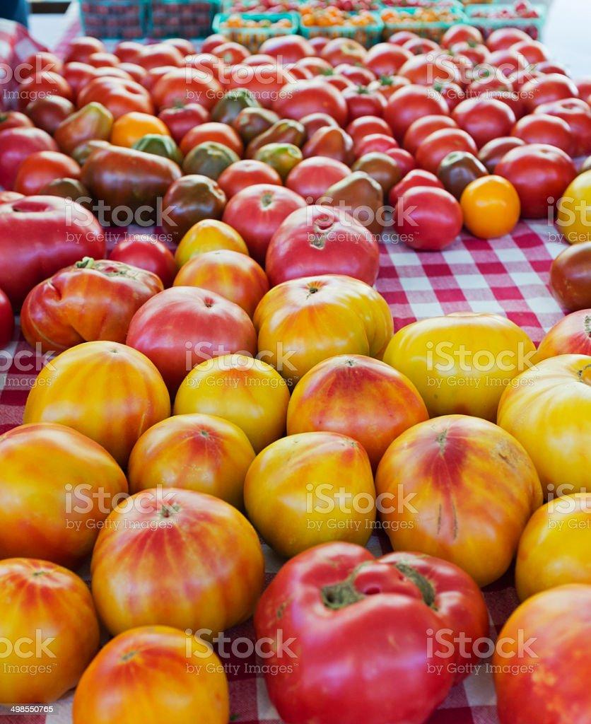 Bunte Tomaten – Foto