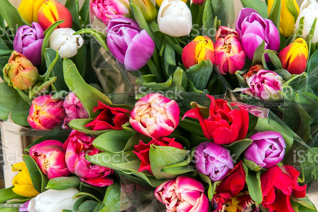 Colorful tulips at a market stock photo