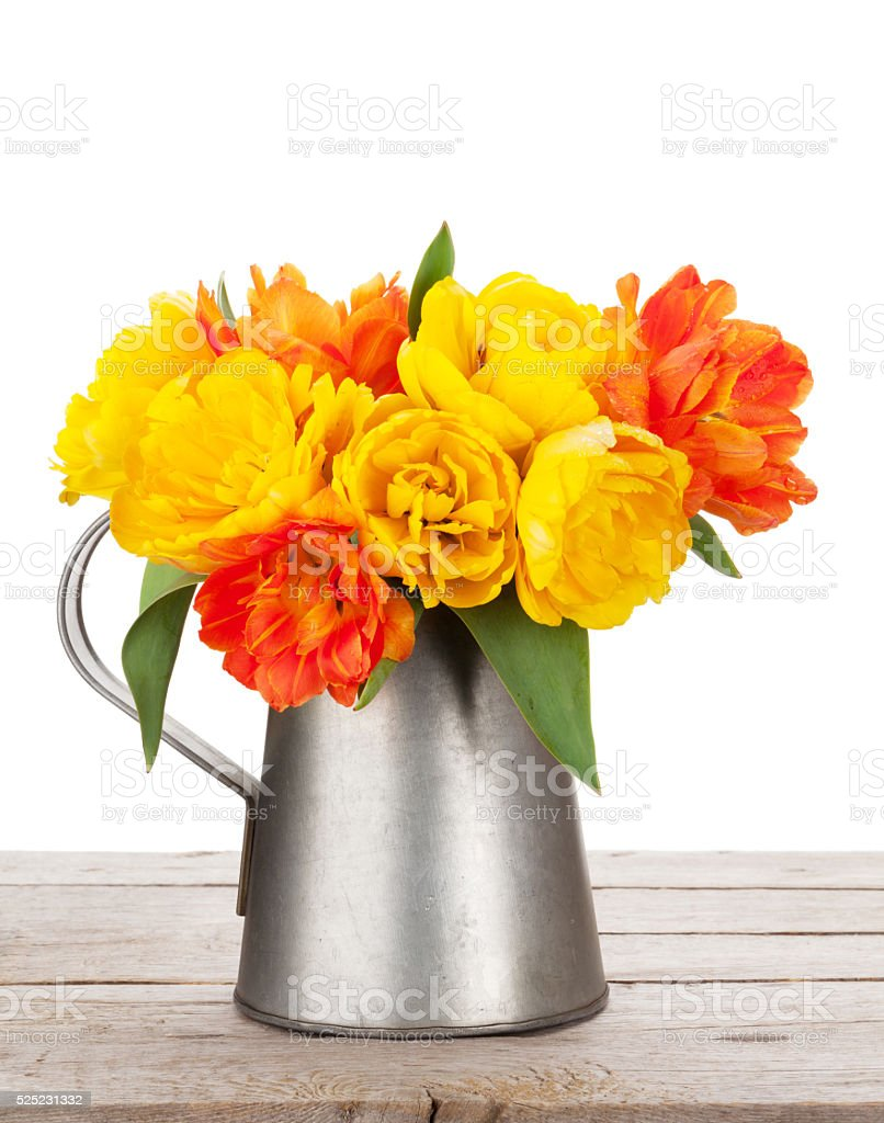 Colorful tulips bouquet in watering can stock photo