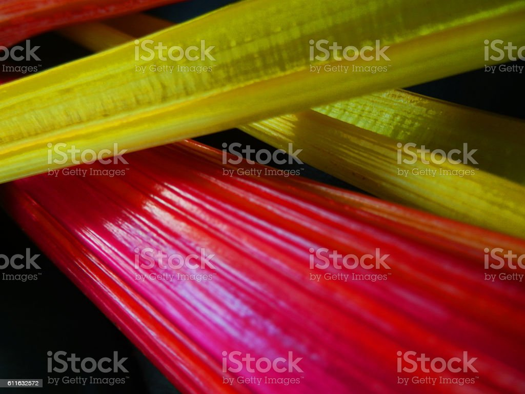 Colorful Vegetable Ingredients Bright Lights Swiss Chard stock photo