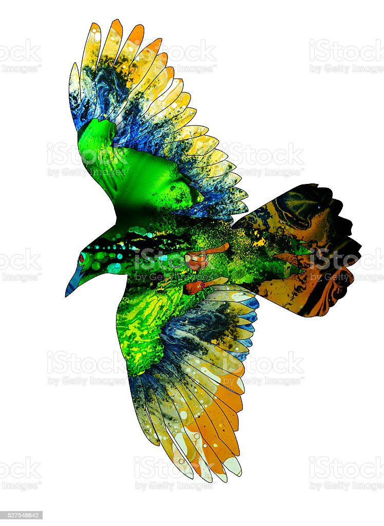 Colorful watercolor illustration of a flying crow stock photo