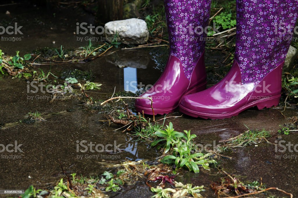 Colorful water-resistant rubber boots in rain, flood and gardening stock photo