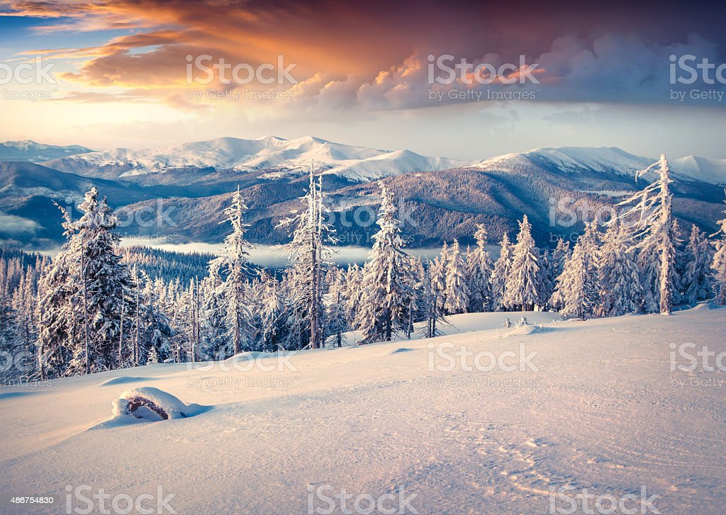 Colorful winter sunrise in the Carpathian mountains. stock photo
