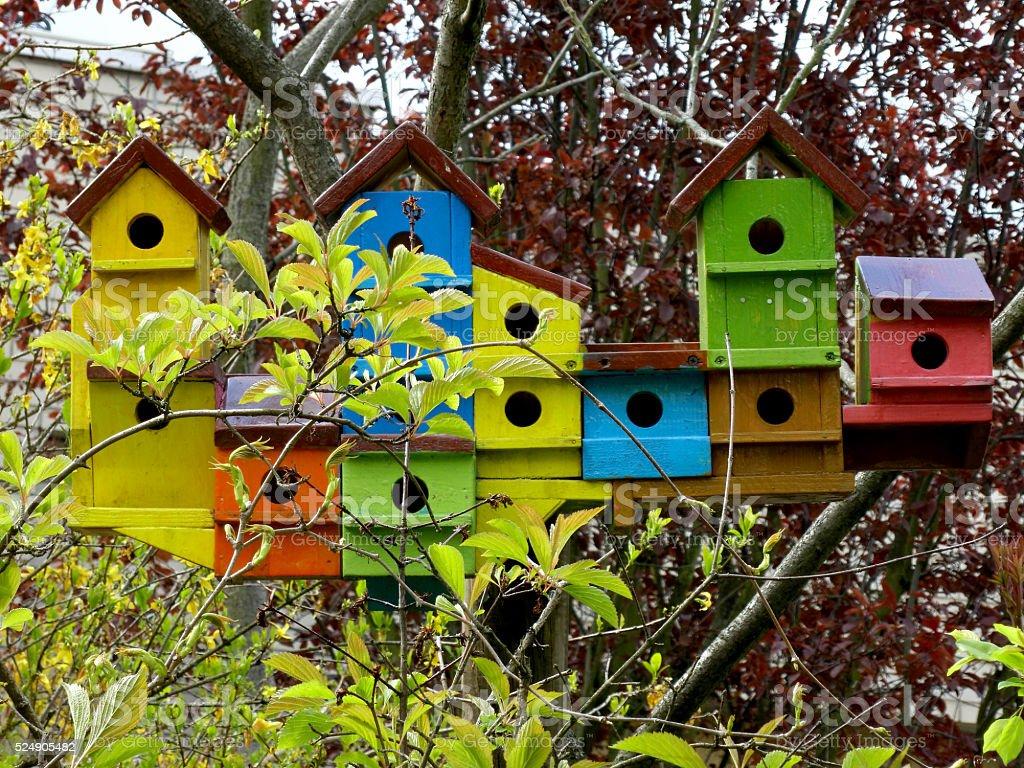 Colorful wooden birdshouses stock photo