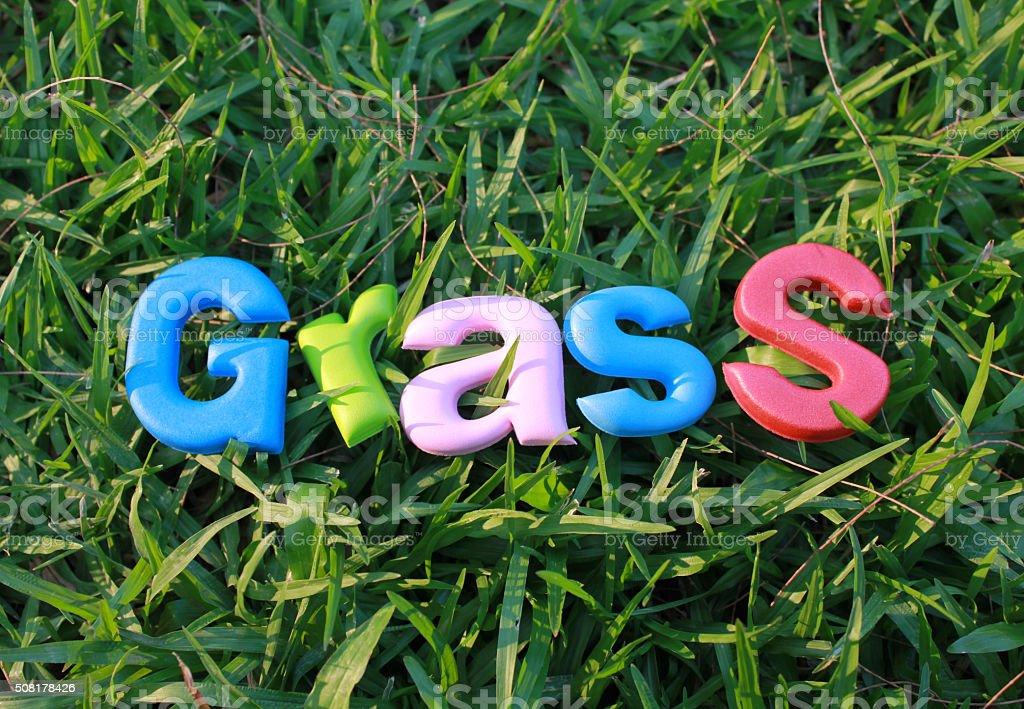 Bunte Wörter von Gras Lizenzfreies stock-foto