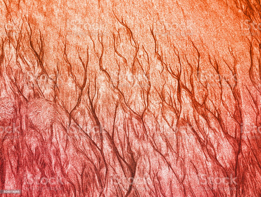 Colorized Nature Pattern Background stock photo