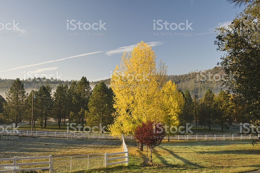 Colors in the Valley royalty-free stock photo