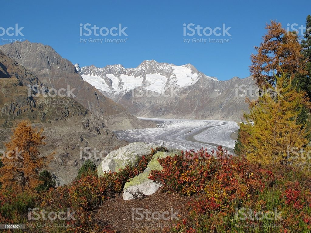 Colors Of Autumn In The Aletsch Area stock photo