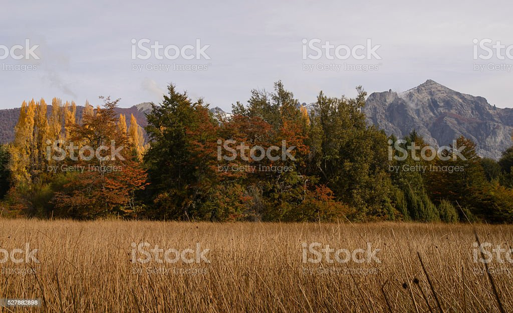 Colors of Patagonia, Bariloche, Argentina stock photo