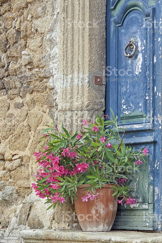 Colors of the Provence: Blue wooden door with red oleander royalty-free stock photo