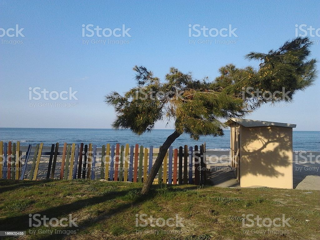 Colors on the winter beach of Pineto royalty-free stock photo