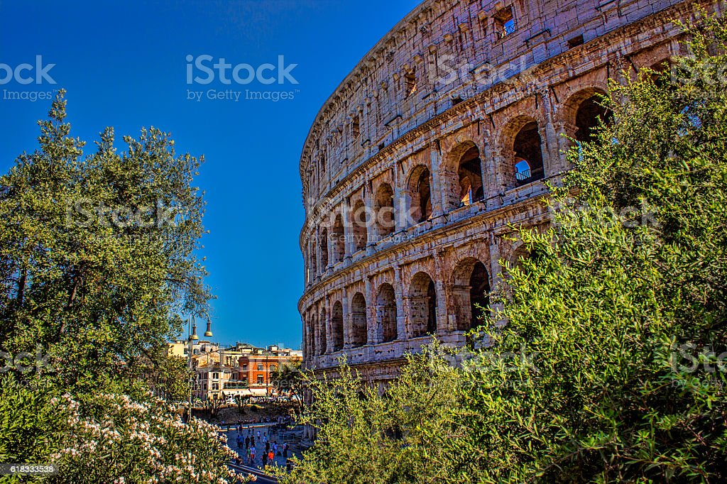 Colosseum covered trees in Rome, Italy stock photo