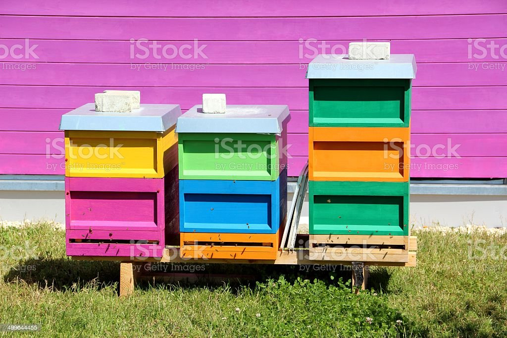 Coloured beehives royalty-free stock photo