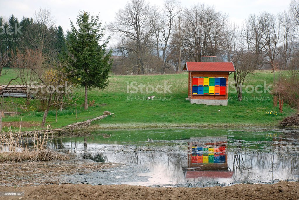 Colourful Beehives by Lake stock photo