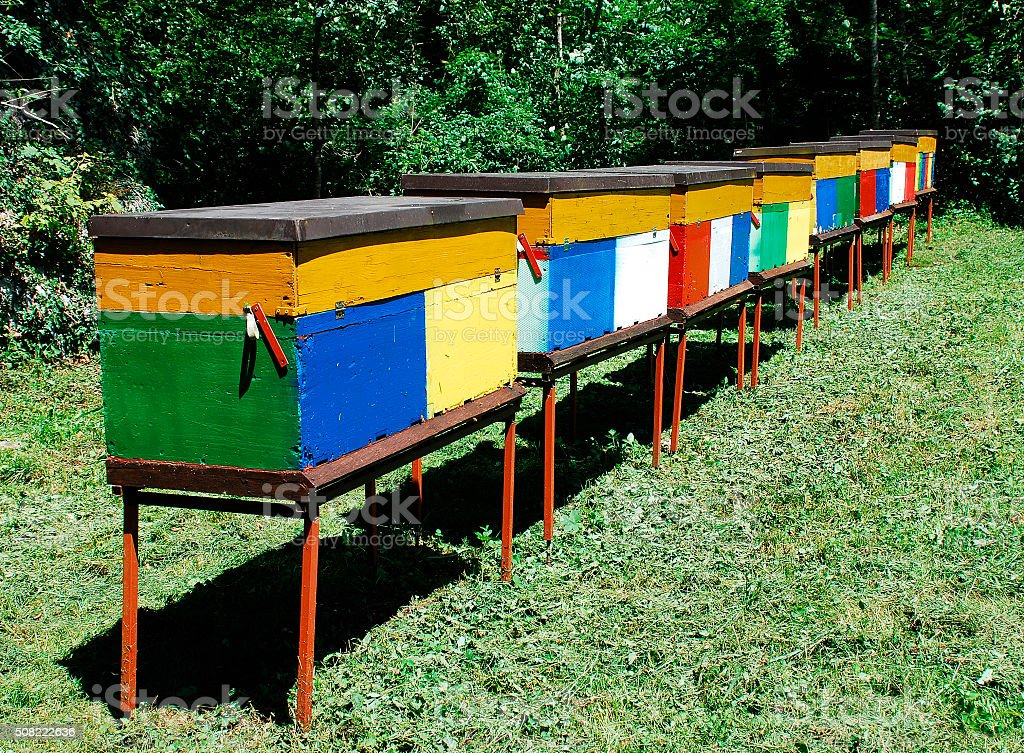 Colourful Beehives stock photo
