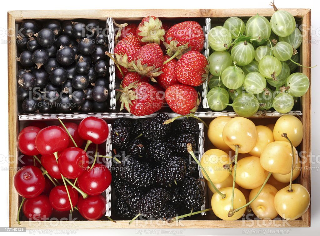 colourful berries royalty-free stock photo