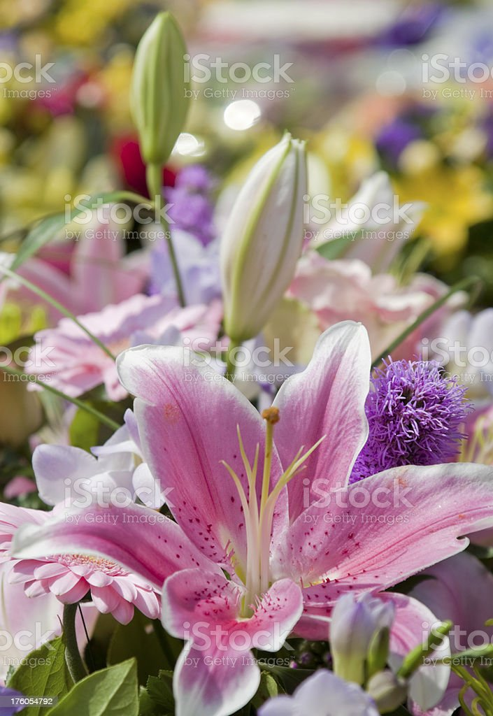 Colourful bouquet with pink lily stock photo