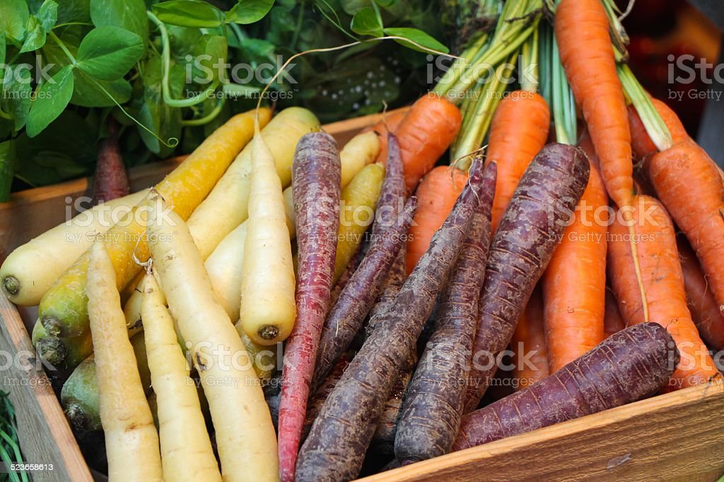 Colourful carrots stock photo