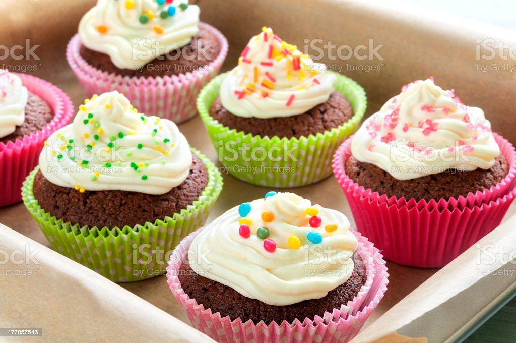 Colourful Chocolate Cupcakes stock photo