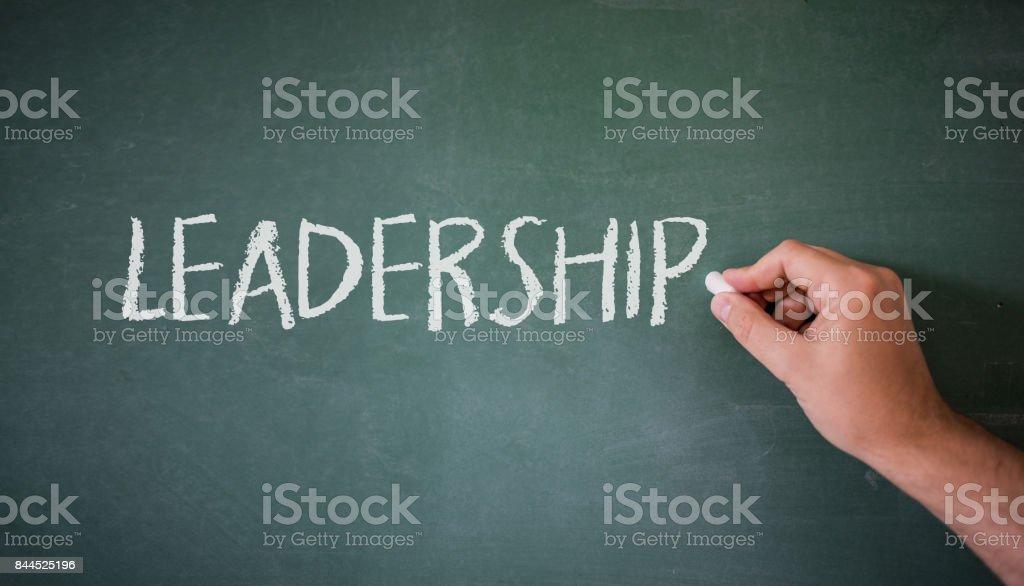 freedom writers leadership