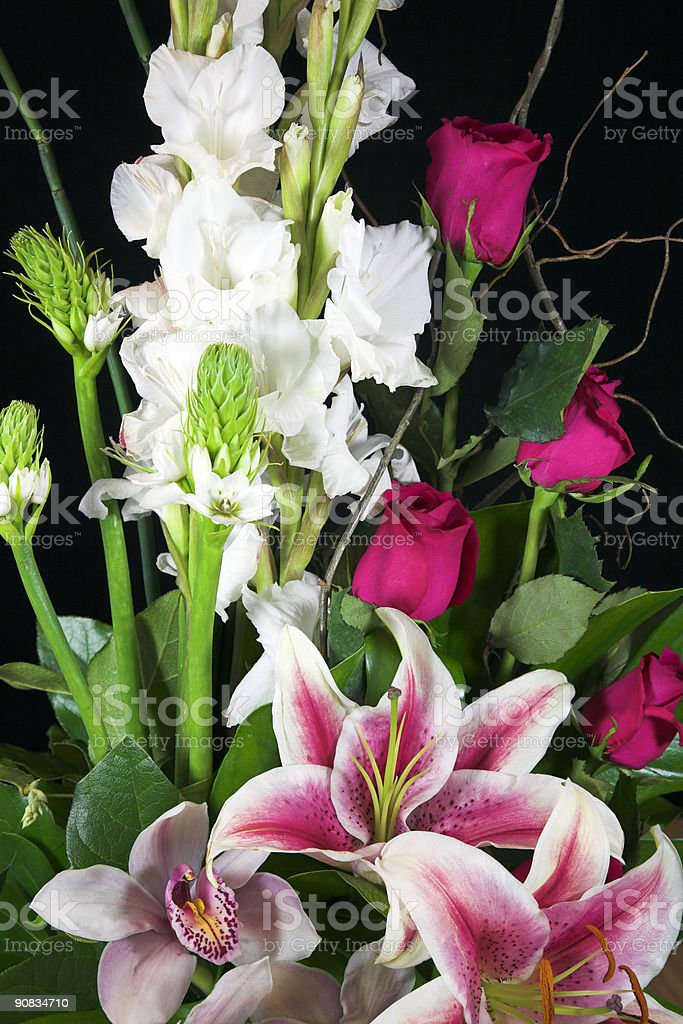Colourful Floral Arrangement royalty-free stock photo