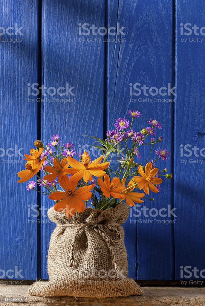 Colourful flowers in front of an old window shutter. royalty-free stock photo