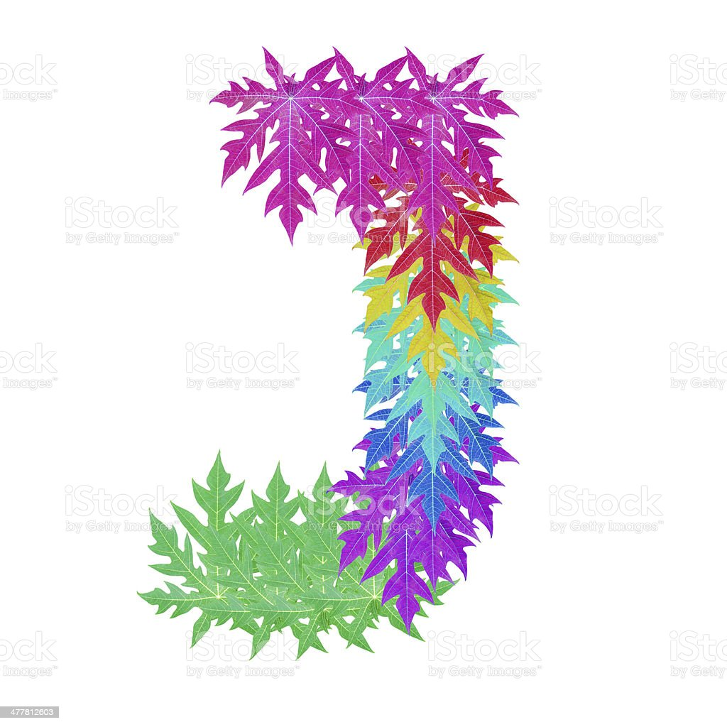 Colourful leaf J alphabet character. royalty-free stock photo