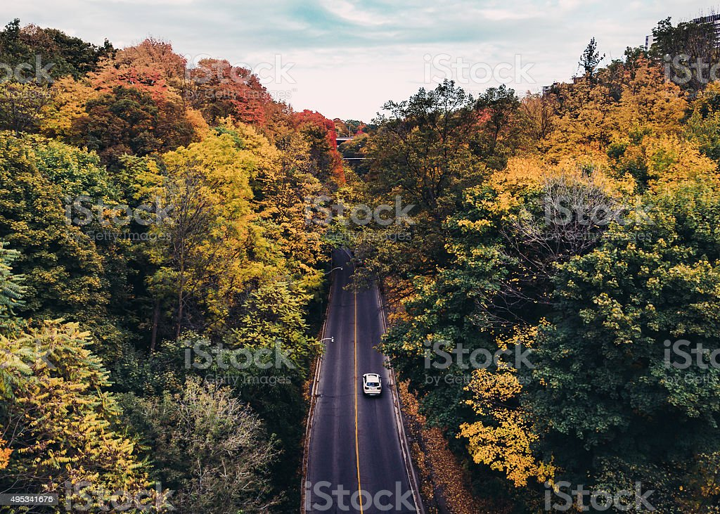 Colourful Roads in Canada in the Fall stock photo