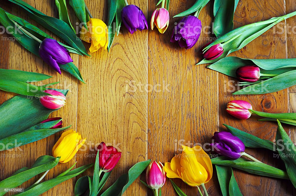 Colourful tulips in a circle on wooden floor. stock photo
