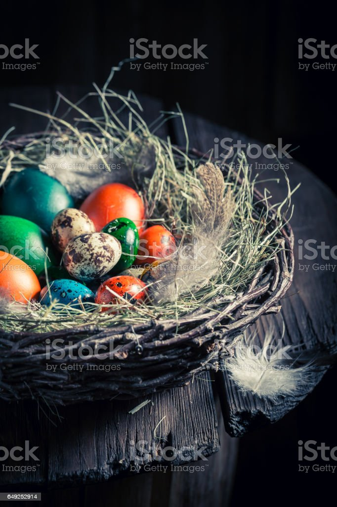 Colourfull eggs for Easter with hay and feathers stock photo